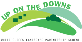 Up on the Downs Logo