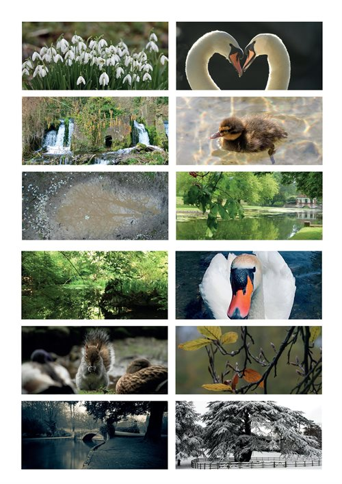 Kearsney Parks Calendar photos